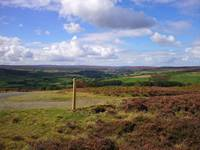 North Yorkshire Moors photo