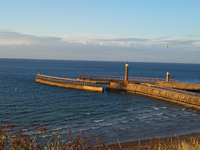 Whitby Pier photo