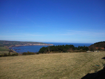 View from Ravenscar Photo
